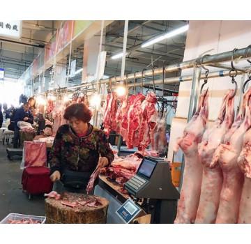 """市场低迷 养殖户望""""羊""""兴叹"""